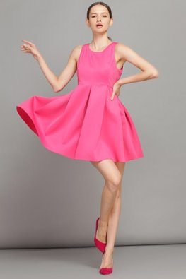 Pink Jewel Neckline Empire Skater Dress (Express)