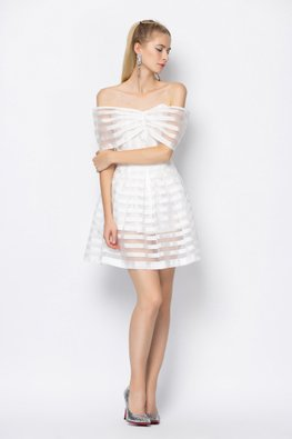 Off-Shoulder See-Through Stripes A-Line Pleated Dress (Express)