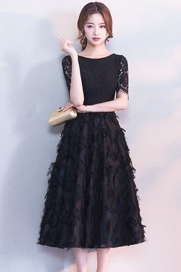 Black Jewel Neckline Feather Lace A-Line Dress (Express)