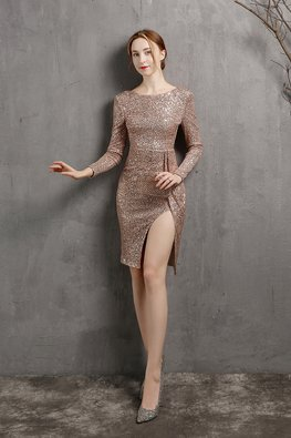 Silver / Gold Round Neck Long Sleeves Front Round Cut Sequins Dress